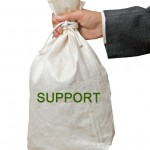 Bag with support